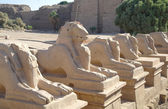 Ancient statues of Ram-headed sphinxes in Karnak temple, Luxor — Stock Photo