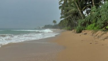 Tropical coastline with yellow sand — Stock Video