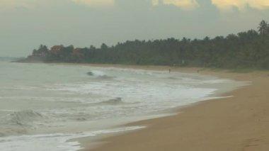 Tropical coastline ,Sri Lanka. — Stock Video