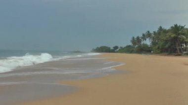 Tropical coastline ,Sri Lanka. — Stock Video