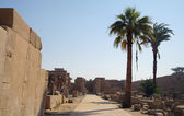Karnak Temple Complex in Luxor — Stock Photo