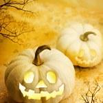 Halloween pumpkins — Stock Photo