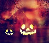Halloween Pumpkins — Stock fotografie