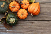 Autumn pumpkins — Photo