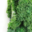 Kale on white background — Stock Photo