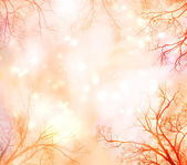Abstract Background with Tree Border — Stock Photo