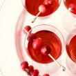 Berry drinks — Stock Photo #14666601