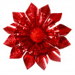 Red Sparkling Gift Bow — Stock fotografie
