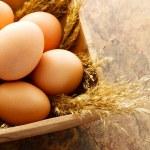 Brown eggs — Stock Photo #22467667