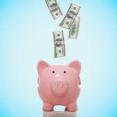 Sparschwein mit hundert-dollar-scheine — Stockfoto