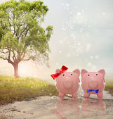 Piggy bank couple in a magical landscape — Stock Photo