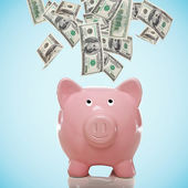 Piggy bank with hundred dollar bills — Stock Photo