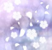 Körsbär blommar bakgrund — Stockfoto