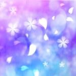 Flower petal purple, blue, pink background — Stock Photo