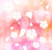 樱花背景 — 图库照片