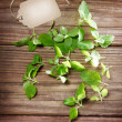 Fresh Mint on Rustic Table with Tag — Stok fotoğraf