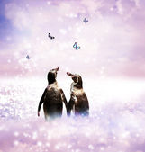 Penguin couple in fantasy landscape — Stock fotografie