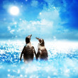 Penguin couple in night fantasy landscape — Foto Stock