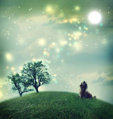 Dachshund dog in a magical landscape — Stock Photo