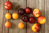 Juicy nectarines and apricots — Stock Photo