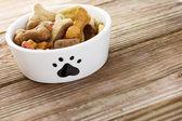 Comida de cachorro na tigela — Foto Stock