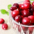 Stock Photo: Fresh Cranberries