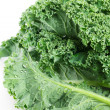 Fresh kale on white background — Stock Photo