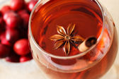 Drink with Star Anise and a Cinnamon Stick — Stock Photo