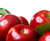 Frische äpfel auf einem weissen hintergrund — Stockfoto