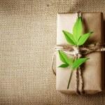 Present box rustic style — Stock Photo #29694407