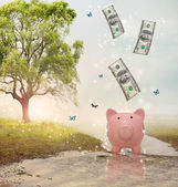 Dollar bills falling in or flying out of a piggy bank in a magical landscape — Zdjęcie stockowe