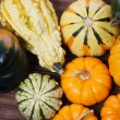 Assorted pumpkins and squashes — Stock Photo #31900879