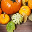 Pumpkins and squashes and autumn leaves  — Stock Photo