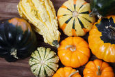 Assorted pumpkins and squashes — Стоковое фото