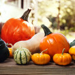 Stock Photo: Varieties of pumpkins and squashes