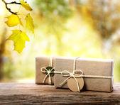 Bir sonbahar yaprakları arka plan ile el işi hediye kutuları — Stok fotoğraf