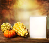 Squashes and greeting card — Stock Photo