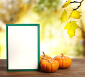 Greeting card with small pumpkins — Stock Photo