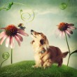 Dog and snail in friendship in fantasy landscape — Stock Photo