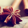 Star anise with cinnamon sticks — Stock Photo #36595995