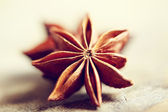 Star Anise — Foto Stock