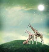 Three giraffes on the fantasy landscape — Stock Photo