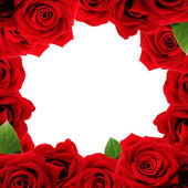 Red roses boarder — Stock Photo