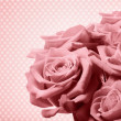 Beautiful pink rose — Stock Photo #39192037