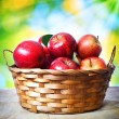 Fresh apples in basket — Stock Photo
