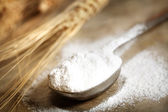 Wheat flour in measruing spoon — Foto de Stock