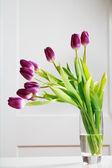 Mooie paarse tulpen — Stockfoto