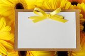 Message card with yellow gerberas — Stockfoto