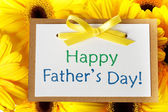 Fathers day card with gerberas — Foto Stock