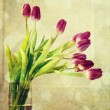 Vintage purple tulips — Stock Photo